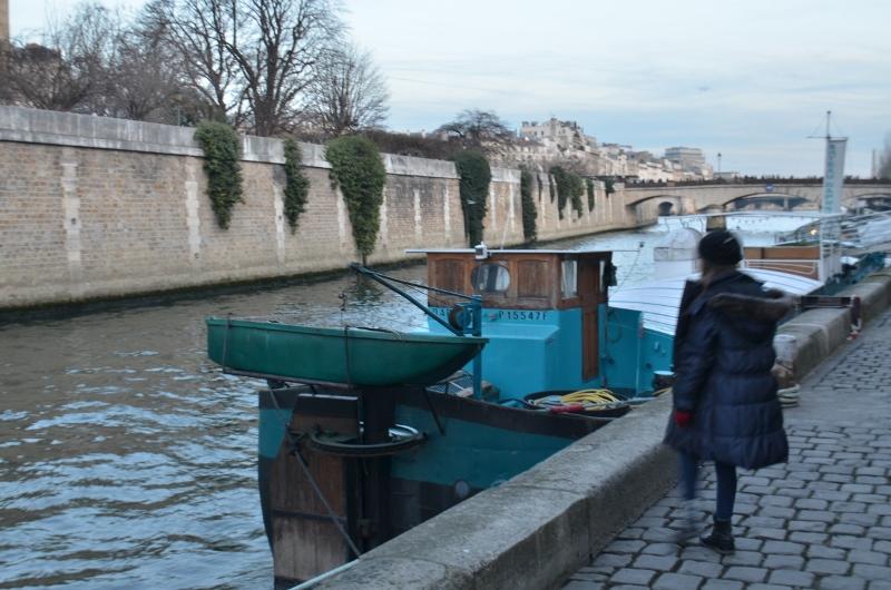 Péniche au bord de la Seine