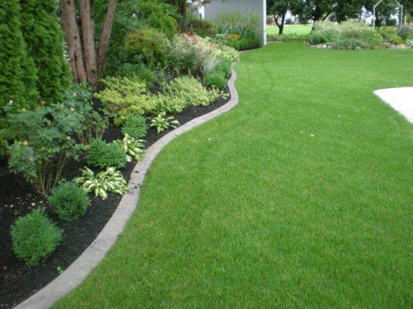 landscape curbing - 545 lawn care
