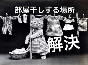 洗濯物を部屋に干したいけど場所がなくて困る猫