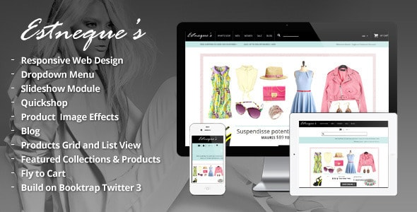 free clothing store website templates
