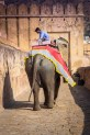 Amer Fort - Elephant Ride