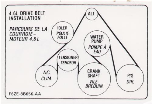 Mustang Drive Belt Decal (1996) GT 4.6