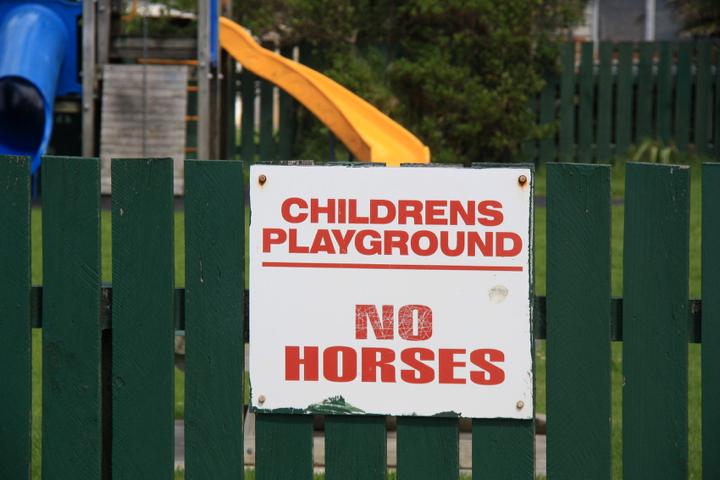 58GradNord - Elternzeit in Neuseeland - No Horses On Playground
