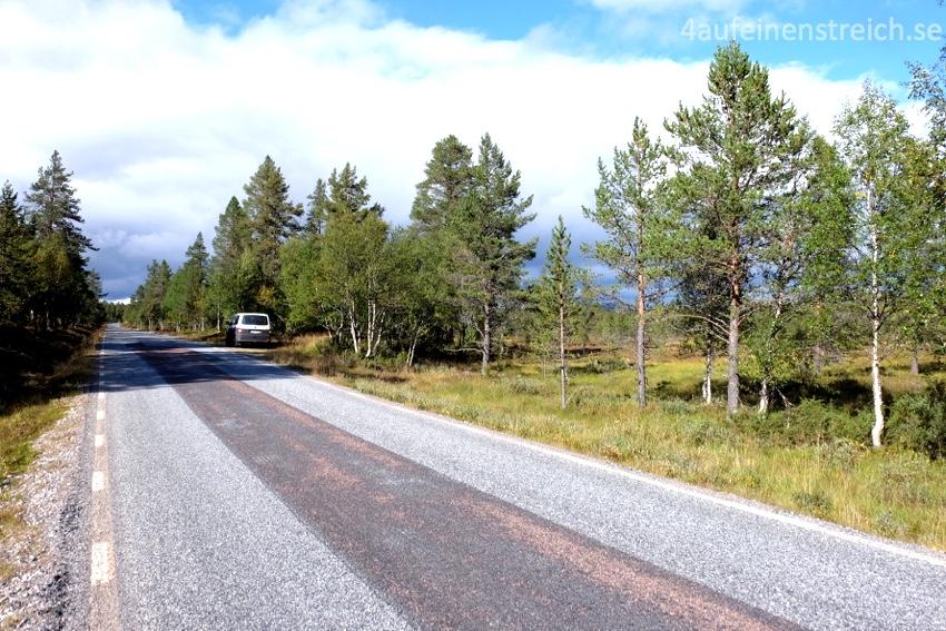 Leere schwedische Landstraßen