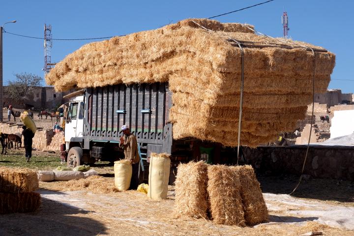 58 Grad Nord - Fotoparade Halbjahr in Bildern - Lastwagen in Marokko