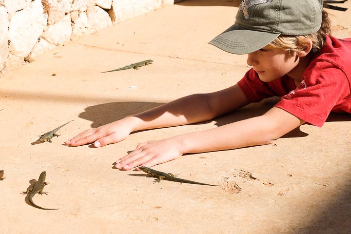 58 Grad Nord - Mallorca mit Kindern - Sa Dragonera -