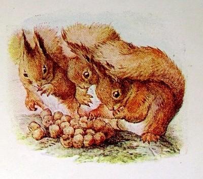 squirrel-nutkin