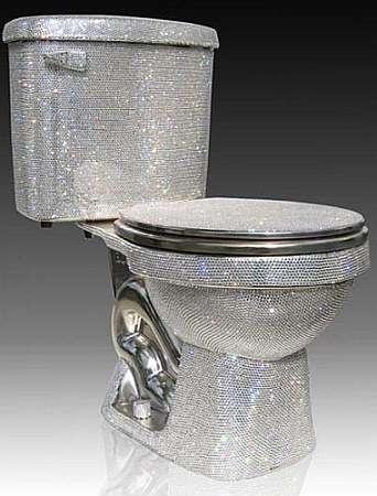 Expensive Toilet!