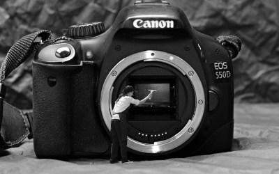 Shooting with Autofocus on a Canon Camera