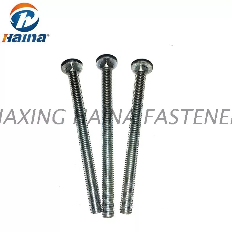 Grade 4.8 or 8.8 Carriage Bolt With Zinc Plated or Hot Dip