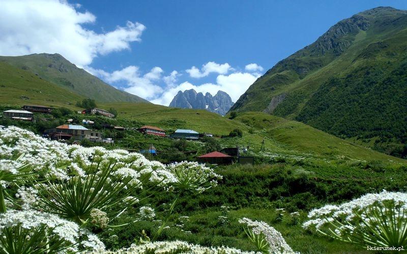 Dla aktywnych stąd już niedaleko pod masyw Chaukhi lub dalsze trekkingi przez przełęcz Chaukhi w kierunku wioski Roshka (czytaj Roszka).
