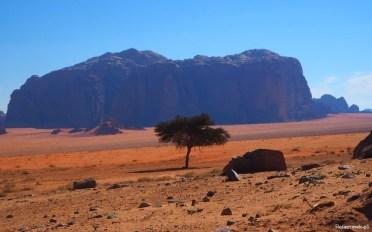 Wadi Rum - pełnia pustyni - Piąty Kierunek02