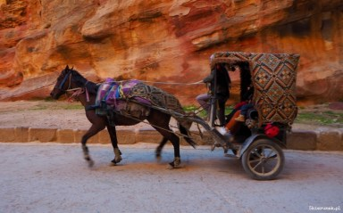 Petra - wąwóz al-Siq - Jordania - Piąty Kierunek07