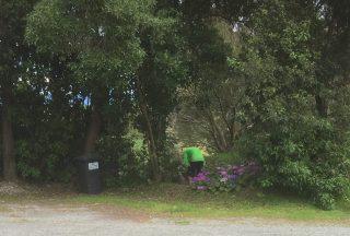 Paul checks out the flower gardens, Mapua
