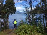 PB contemplates a swim - Lake Kaniere