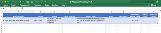 Sample Excel Accomplishment Log