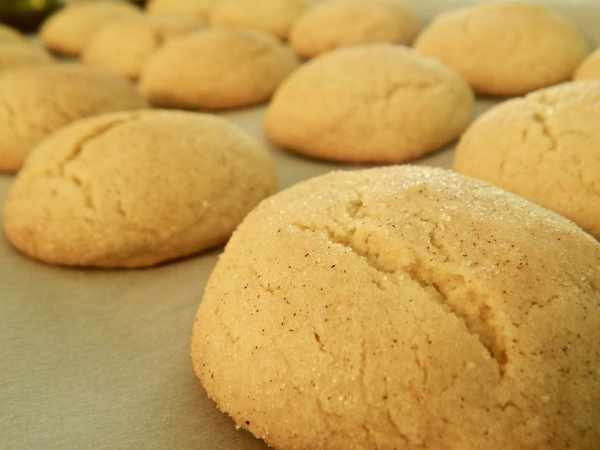 Low Carb Cinnamon Butter Cookies