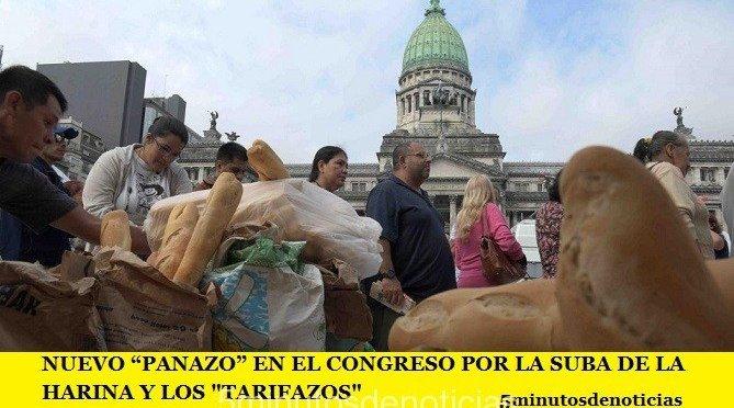 """NUEVO """"PANAZO"""" EN EL CONGRESO POR LA SUBA DE LA HARINA Y LOS """"TARIFAZOS"""""""