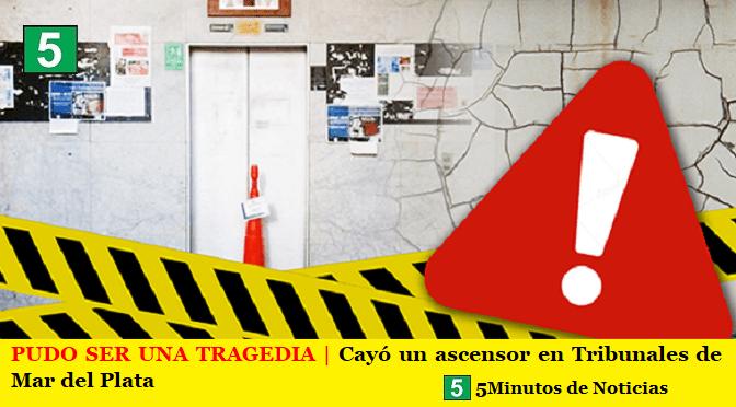 PUDO SER UNA TRAGEDIA | Cayó un ascensor en Tribunales de Mar del Plata