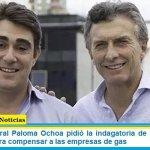 La fiscal federal Paloma Ochoa pidió la indagatoria de Iguacel por la resolución para compensar a las empresas de gas