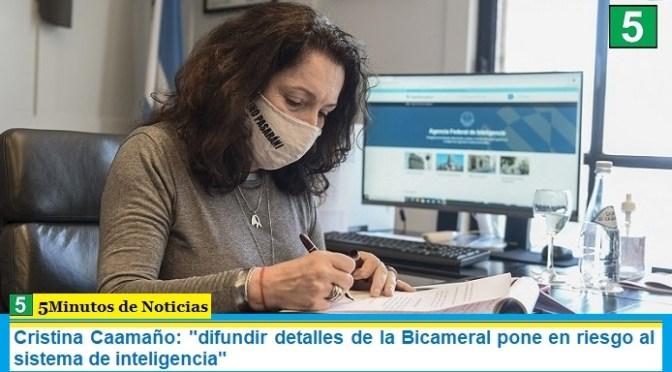 """Cristina Caamaño: """"difundir detalles de la Bicameral pone en riesgo al sistema de inteligencia"""""""