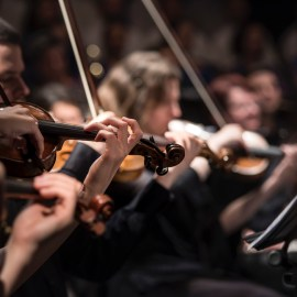 5Q: Finding Your Place In The Symphony