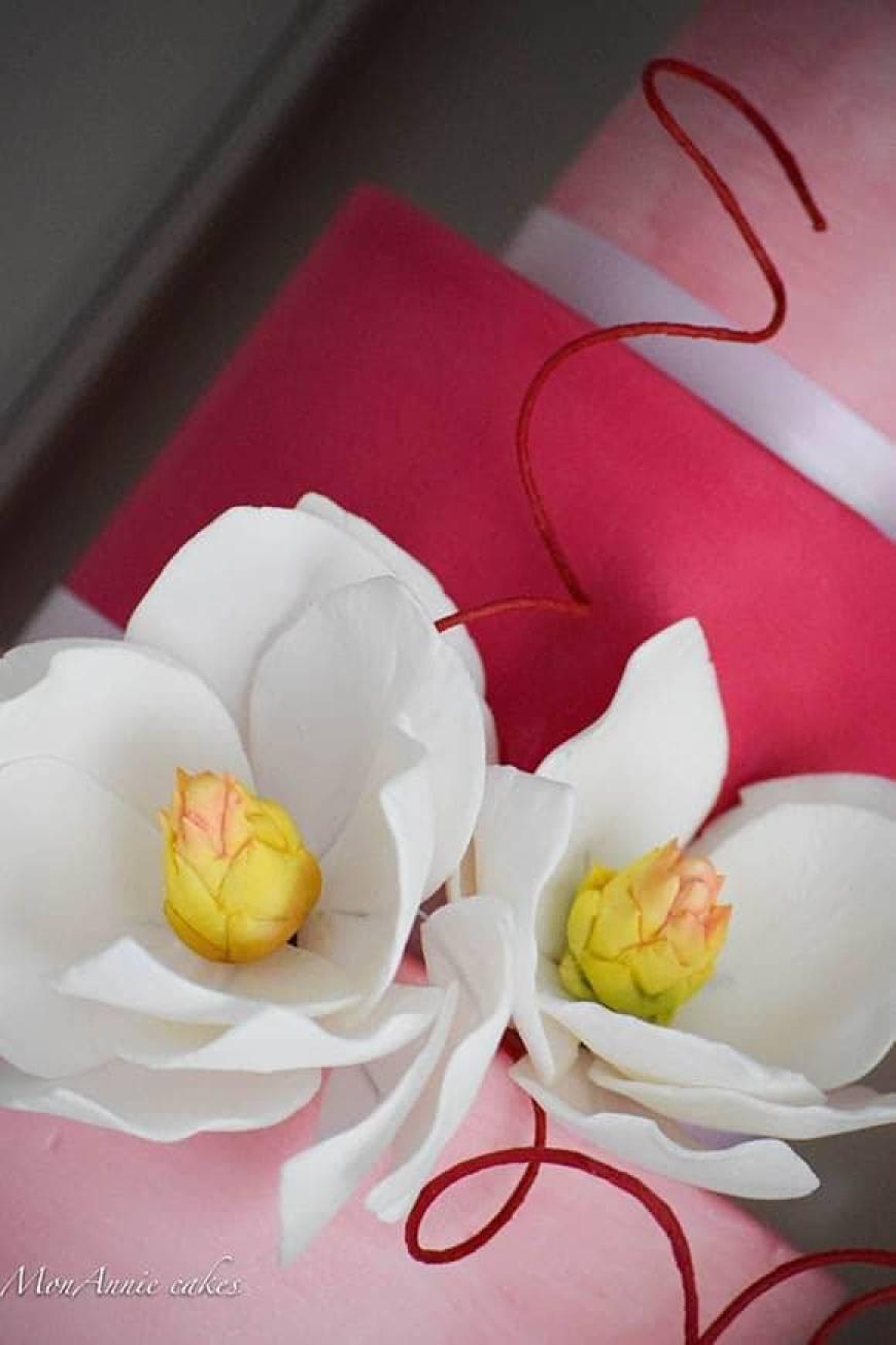 Sugar Flowers - Magnolia