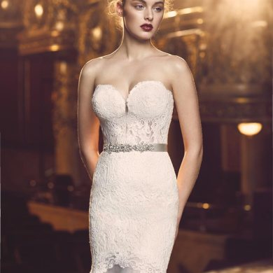 Paloma Blanca And Mikaella Bridal Luxurious 2016 Collections