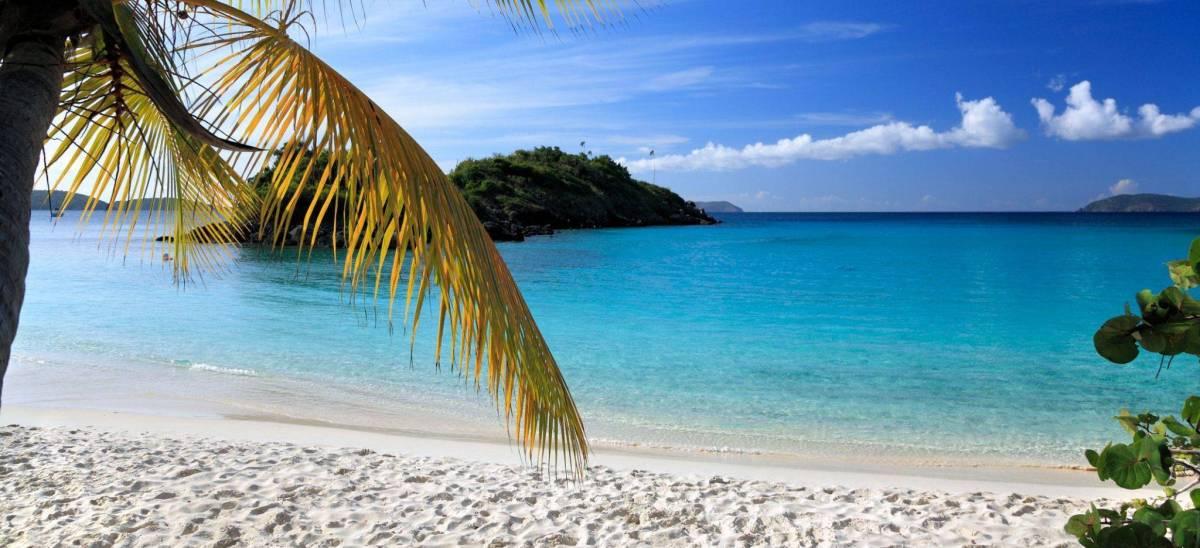tropicaltravelersblog.com