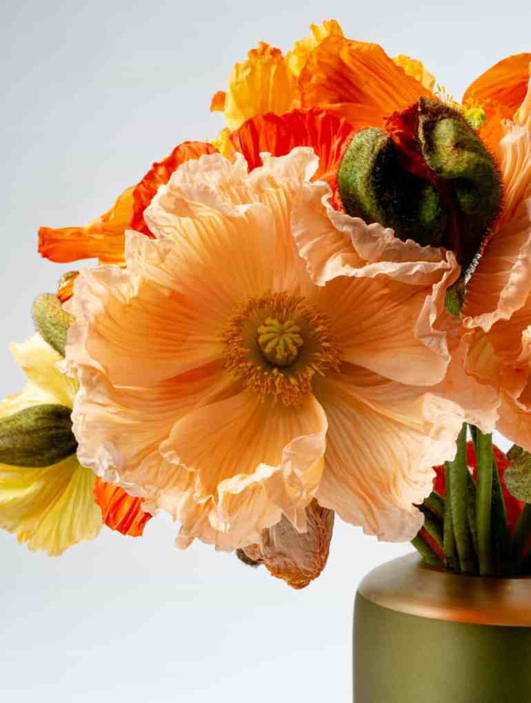 THE WELLBEING BENEFITS OF FLOWERS