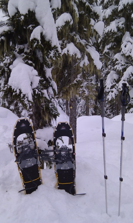 Indispensable tools for the back country now that there is over 6 feet of snow on the ground and the top 3-4 feet of it is pure powder!