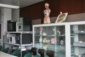 Blick in den Phonetik-Raum: viele anatomische Modelle und technische Geräte
