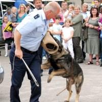 Foto: Polizei Trier - 5VIER
