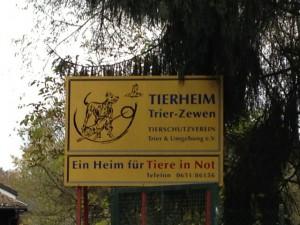 Tierheim_3