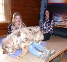 Lagerungsübung mit Hund Marie und Therapeutin Alexandra Rex