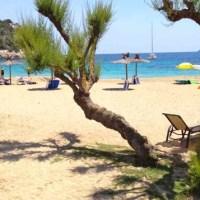 Ibiza_01 - 5VIER
