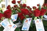 Im Zeichen der Rose 2 - 5VIER