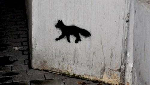 Fuchs6