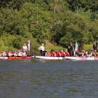 Trierer Drachenbootrennen
