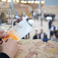 Weinforum2015-FotoArnoldi_0085- - 5VIER