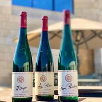 Weintests: Trockene Weine des Jahrgangs 2019 aus der Region Mosel sind Spitze