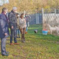 Zusätzliche Spende für das Trierer Tierheim