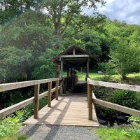Brücke am Stausee Irrhausen im Naturpark Südeifel Foto: Ansgar Dondelinger