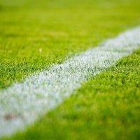 Fussballrasen Aussenlinie - Foto: StockSnap from Pixabay