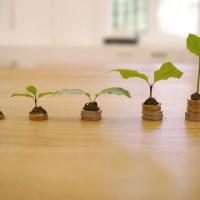 Das Bild zeigt 5 Münzhaufne mit Pflanzen darauf, die ein Wirtschaftswachstum darstellen sollen. Bild von RoboAdvisor auf Pixabay