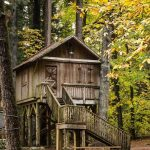 Discover This Whimsical Treehouse Nestled In Surrey S Redwood Park