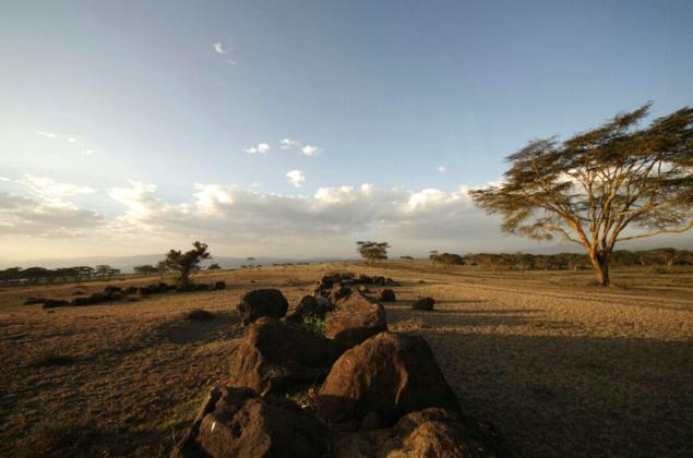 out-of-africa-island-naivasha-stones-3382