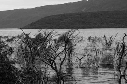 kenya-2015-lake-bogoria-3907