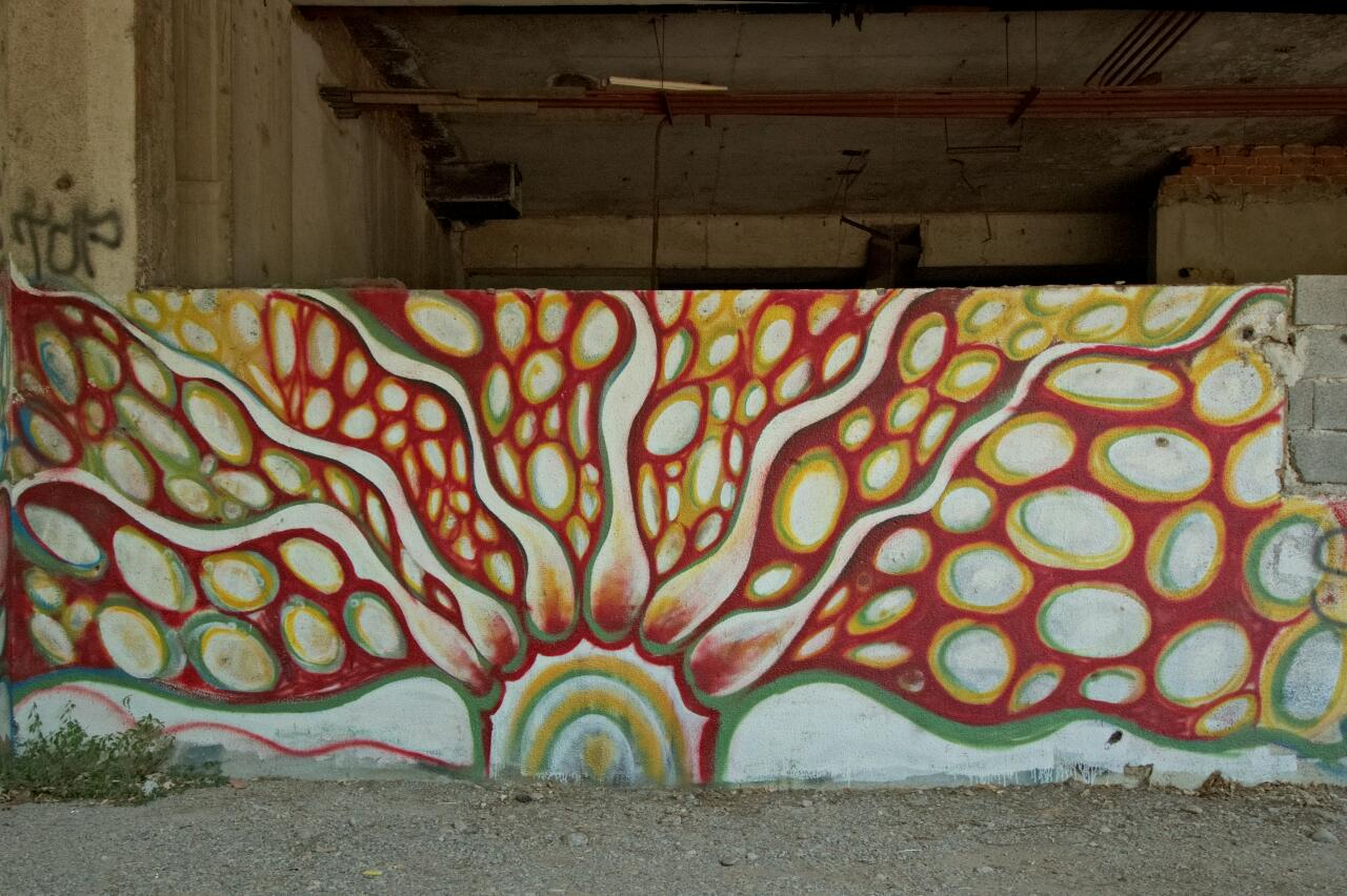 Beautiful grafitti of something unspecifically organic in Mostar