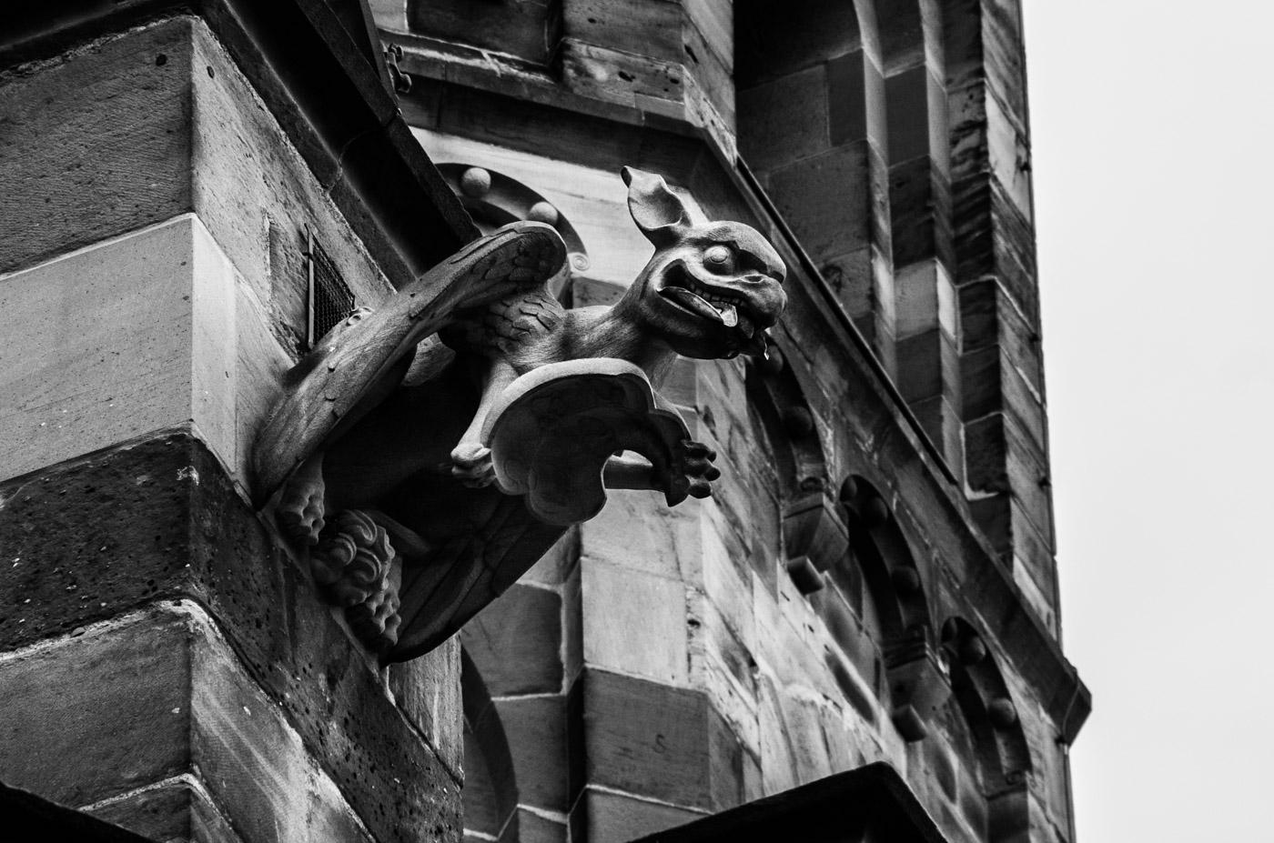 Gargoyle at the Freiburg cathedral